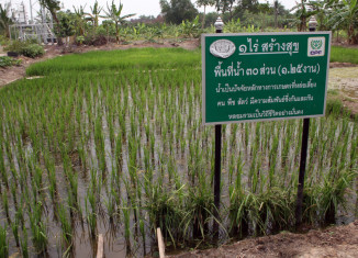 Thailand's sufficiency economy a role model for sustainable development