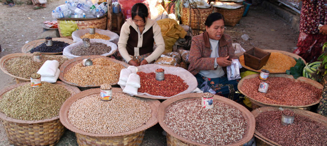 Pulses and beans offer Myanmar top trade window   Investvine